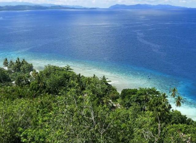 အင္ဒုိနီးရွားႏုိင္ငံ Halmahera ကြ်န္အား ေတြ႔ရစဥ္(ဓာတ္ပုံ-အင္တာနက္)