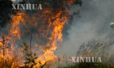 ဩစတြေးလျနိုင်ငံ၌ တောမီးများအကြီးအကျယ်လောင်ကျွမ်းနေသည်ကိုတွေ့ရစဉ်(ဆင်ဟွာ)