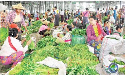 ရန်ကုန်မြို့ရှိဈေးတစ်ခုအားတွေ့ရစဉ် (ဓာတ်ပုံ--MOI)