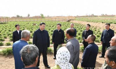 တရုတ်နိုင်ငံ သမ္မတ ရှီကျင့်ဖိန် မေ ၁၁ ရက်က တာ့ထုန်းမြို့ ယွင်းကျိုးခရိုင်ရှိ သဘာဝ ဒေးလီလီပန်းစိုက်ခင်းတစ်ခုသို့ သွားရောက်ကြည့်ရှုစစ်ဆေးကာ ဒေသခံများနှင့် ရင်းရင်းနှီးနှီး စကားပြောကြားနေစဉ် (ဆင်ဟွာ)