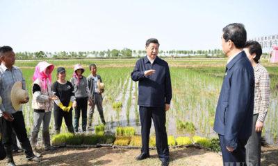 တရုတ်နိုင်ငံ သမ္မတ ရှီကျင့်ဖိန်ကနင်းရှဟွေ ကိုယ်ပိုင်အုပ်ချုပ်ခွင့်ရဒေသ Helan ကောင်တီရှိ ကျေးလက် ecotourism ဥယျာဉ်တစ်ခုသို့ ဇွန် ၉ ရက်တွင် သွားရောက်ရစဉ်(ဆင်ဟွာ)