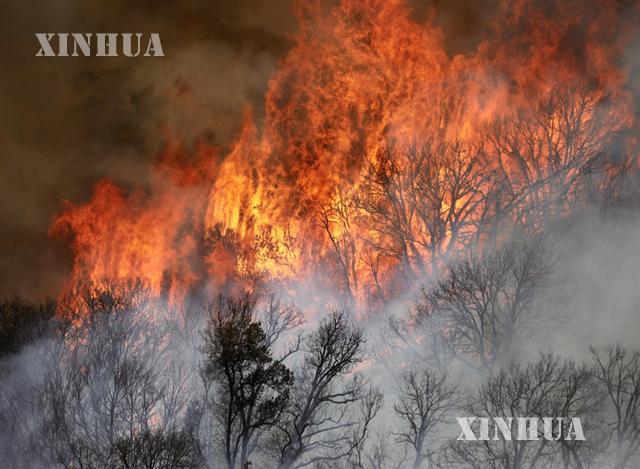 အမေရိကန်နိုင်ငံ ကယ်လီဖိုးနီးယားပြည်နယ် တောင်ပိုင်း Riverside နယ်မြေတွင် တောမီးလောင်နေသည်ကို တွေ့ရစဉ် (ဆင်ဟွာ)
