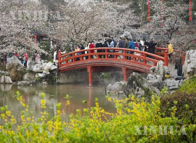 တရုတ်နိုင်ငံ ဝူဟန်မြို့ရှိ East Lake ရေကန်ကြီးသို့ မတ် ၁၁ ရက်က လာရောက်လည်ပတ်ကြသော ခရီးသွားပြည်သူများအား တွေ့ရစဉ်(ဆင်ဟွာ)