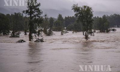 ဩစတြေးလျနိုင်ငံ နယူးဆောက်သ်ဝေးလ်ပြည်နယ် သစ်တောတစ်ခု ရေနစ်မြုပ်နေသည်ကို မတ် ၂၂ ရက်က တွေ့ရစဉ်(ဆင်ဟွာ)